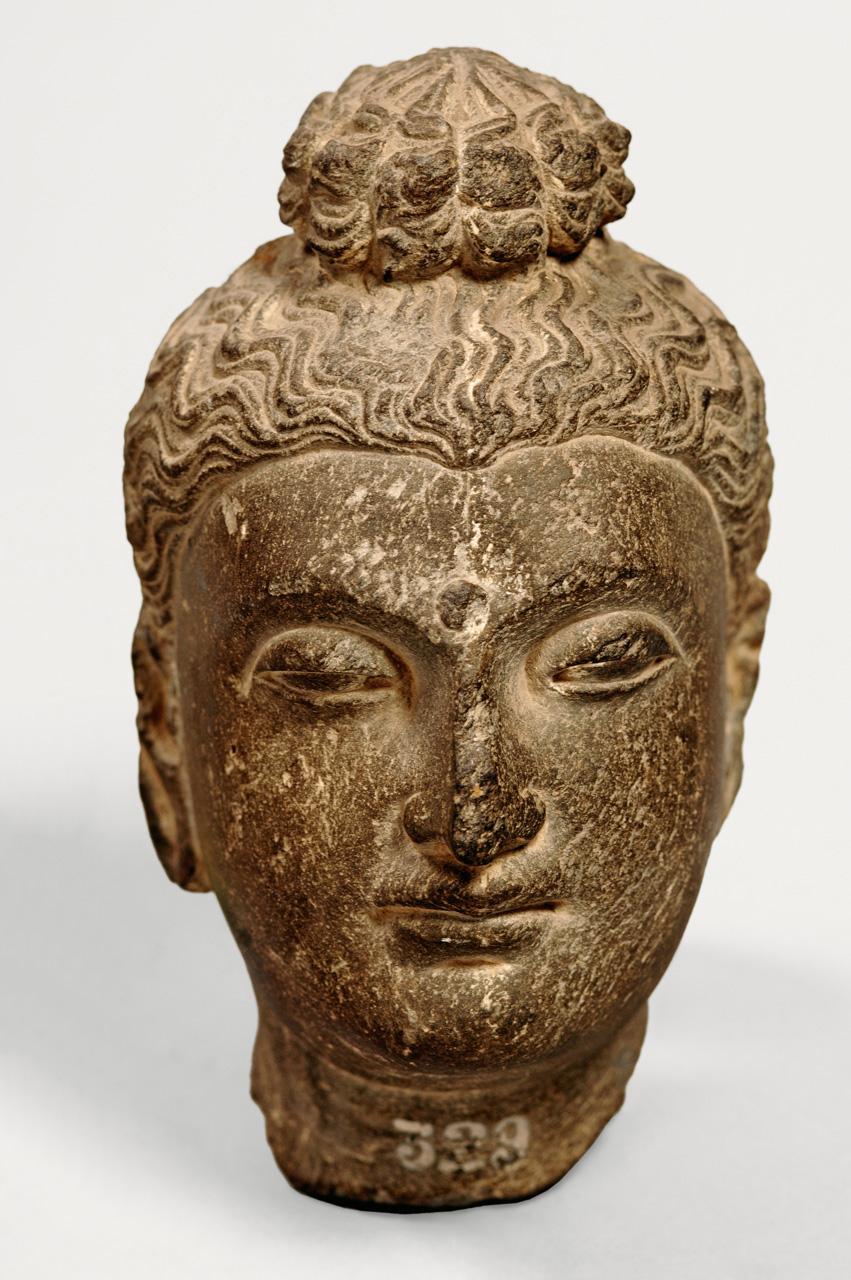 Gandhara buddhas and bodhisattvas buddha head buycottarizona