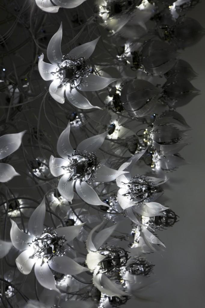 Una Lumino (detail)